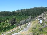 Mount Calvario